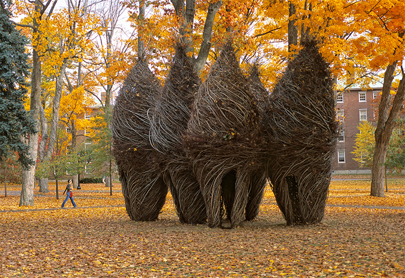 Patrick Dougherty Simple pleasures Brunswick UK