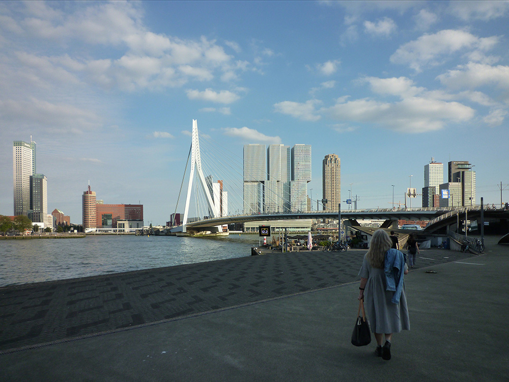 Our visit to Rotterdam